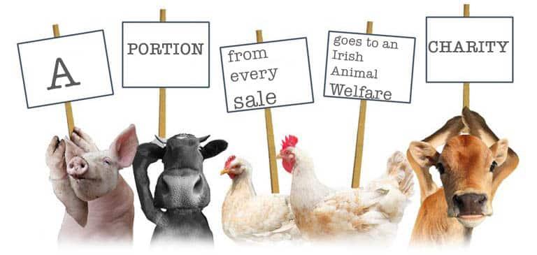Kelly Hood - Animal Welfare